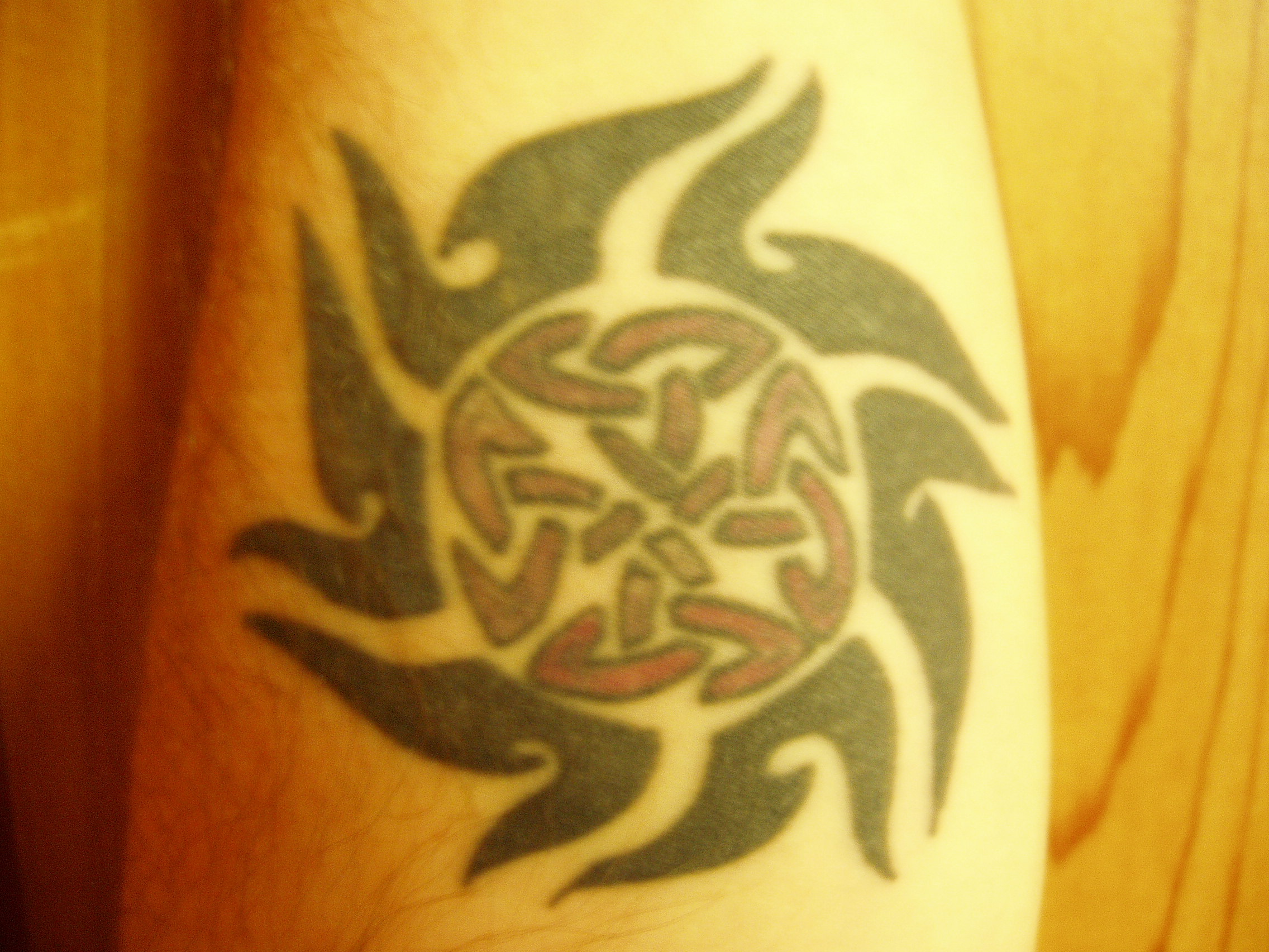 Celtic Sun tattoo