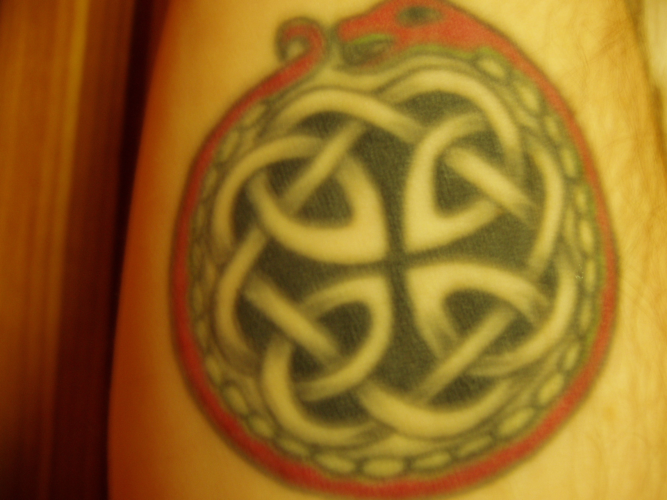 Celtic Snake Tattoo
